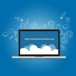 Domain Name Management
